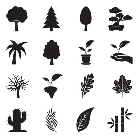 Tree Icons. Black Flat Design. Vector Illustration. Banque d'images - 117831384