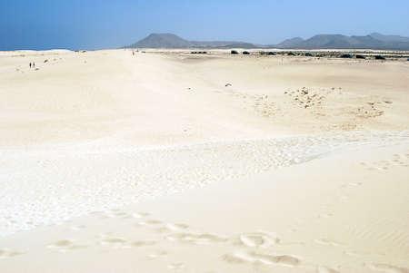 Fuerteventura dunes that looks like a desert Stock Photo