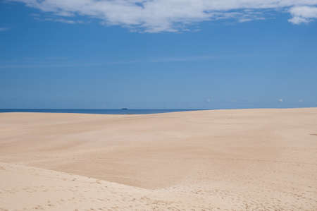 Fuerteventura dunes which shows that its like being in a desert