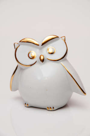 white and gold owl on white background photo
