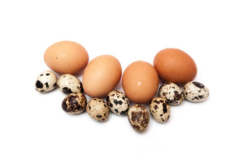quail and chicken eggs on a white background mixed photo