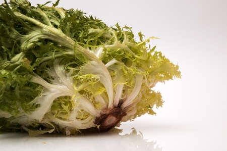 andijvie: groene andijvie op een witte achtergrond