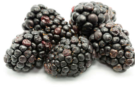 ripe blackberries on a white background