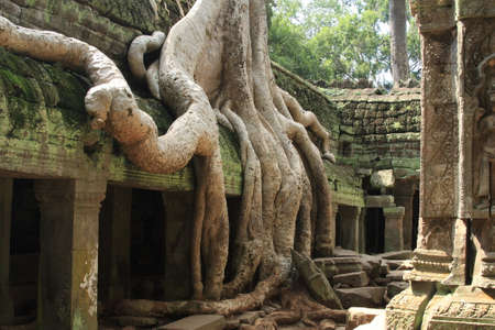 siem reap: Relaxing and meditating moment at Anghor Wat in Siem Reap in Cambodia Stock Photo