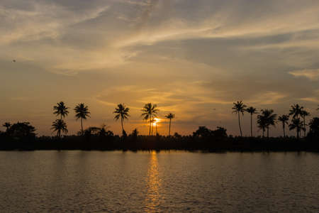 Sunset on the Kerala backwater, palm trees  and wildlife in India Stock Photo