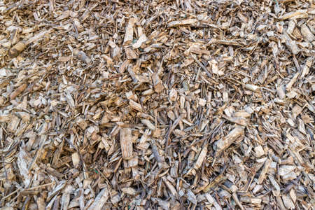 Biomass from agricultural and wood waste, pelets, woodchip for power generation
