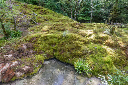 Hiking track of the Pertes de L'Ain, Losses of the Ain, Jura in France 免版税图像