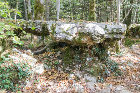 The karstic trail of Malrochers from Jura in France 免版税图像