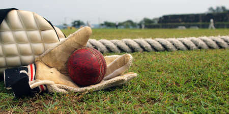 ball of Cricket