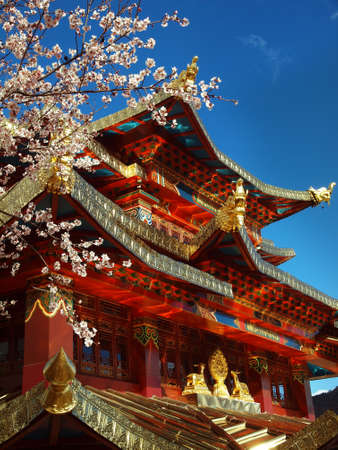 Detail of architecture, Tibetan monastery in Shangri-la during tree blossom, Yunnan, China Foto de archivo