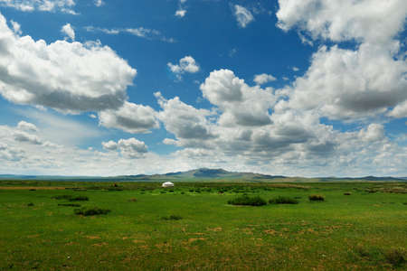 view of grassland in the steppe of Mongolia
