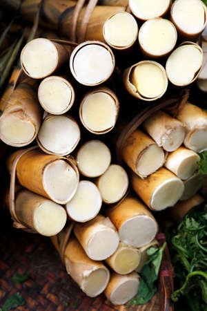 bamboo shoot sold in asian market