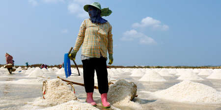 Worker Harvesting salt in salt field at Ban Laem-Thailand