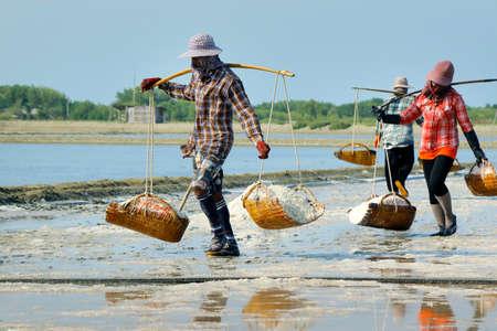 Worker Harvesting salt in salt field