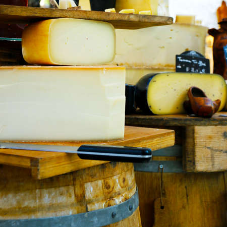 assortment of tomme of ewes in market in provence, france-with text ewes milk Reklamní fotografie - 130783749
