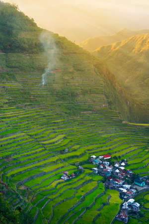 Sunset in the rice field terraces in the area of banaue, in Philippines