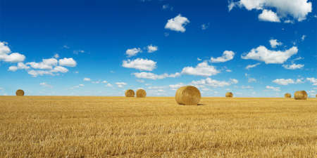 haystack harvested in cereal field