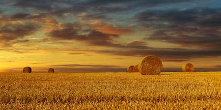 haystack harvested in cereal field at sunset time Standard-Bild