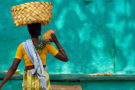 indian woman with rattan basket on her head carrying pineapple