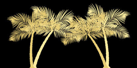 Palm trees silhouette at dark background.