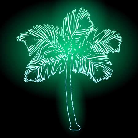 Palm tree silhouette at dark background.  イラスト・ベクター素材