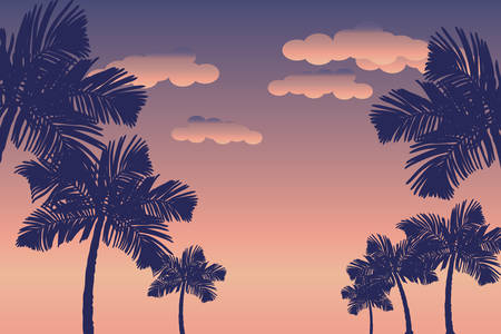 Palm trees silhouettes at sunset background.