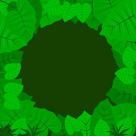 Tropical Jungle background. Leaves of the tropical trees and plants as frame. Vector illustration EPS10
