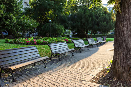 Park alley in the center of the Bulgarian capital. Sofia, Bulgaria