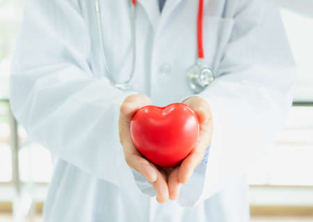 Doctor hands holding red heart, love and health medical and insurance concept