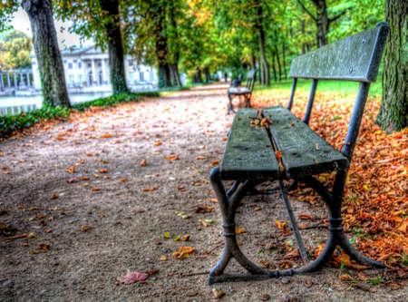 empty bench in lazienki park, warsaw, poland Stock Photo - 11408062