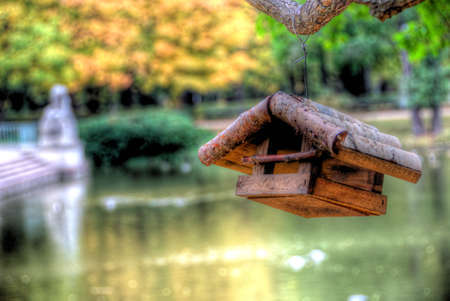 birdhouse with blurred background photo