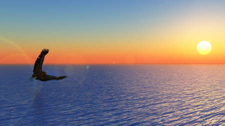 seascape with eagly flying 3d Stock Photo - 18868796