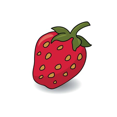 Strawberry illustration Vector