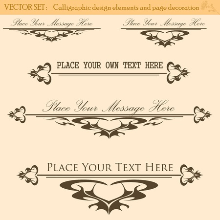 Vector Set of Vintage Design Elements  Stock Vector - 13282276