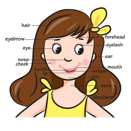elleboog: Cartoon kind Meisje Woordenschat van het gezicht van onderdelen illustratie
