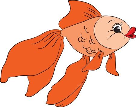 swimming carp: Cartoon goldfish illustration