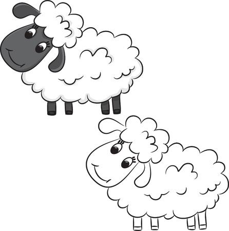 and sheep: Ovejas de la historieta. Libro de colorear. Vectores