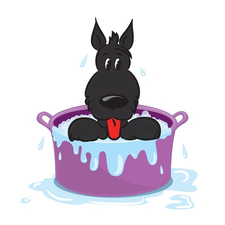 Funny puppy in the bath  Isolated on white  Vector illustration Vector