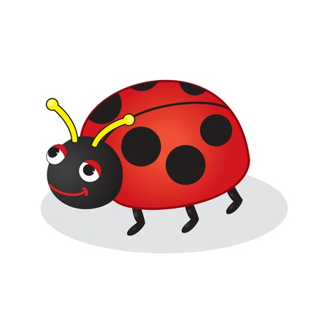 Bug toy vector illustration  Isolated on white  Vector