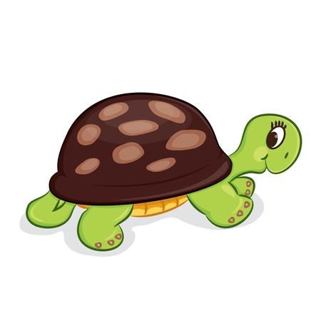 tortue verte: Illustration de tortue de bande dessin�e