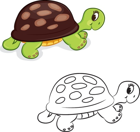Cartoon turtle  Coloring book  illustration