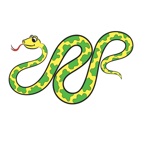 Illustration of snake on a white background. Vector