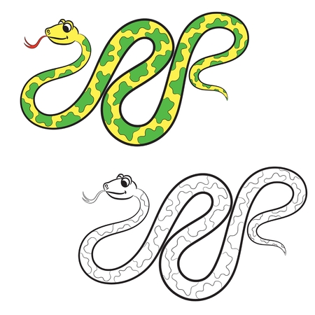 Illustration of snake. Coloring book. Vector