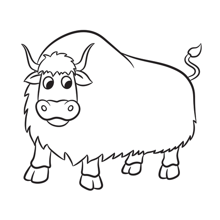 yak: Illustration of outlined yak on a white background.