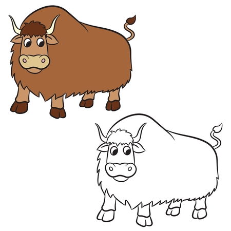 yak: Illustration of yak on a white background. Coloring book.