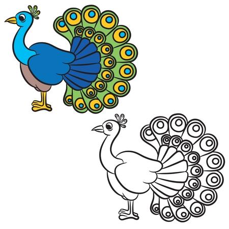 Dibujo Animado Del Pavo Real Para Que El Diseño Ilustraciones ...