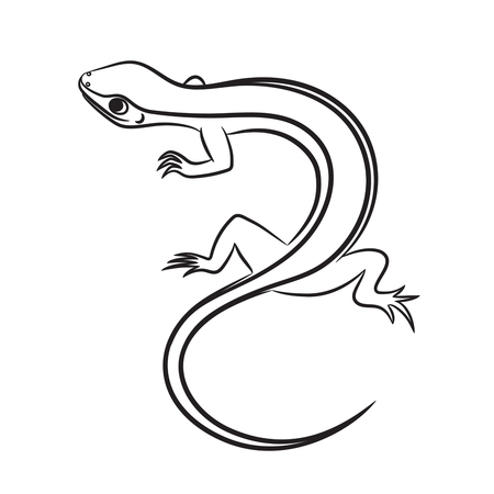 babyish: Cartoon illustration of little lizard outlined. Vector illustration.