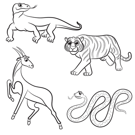 gazelle: Zoo animals collection. Vector illustration.