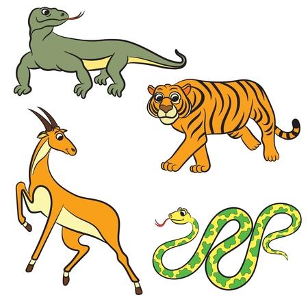 zoo animals: Zoo animals collection. Vector illustration.