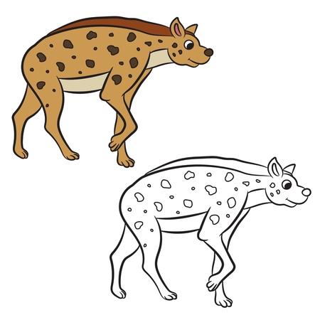 Illustration of hyena standing. Coloring book.Vector Vector